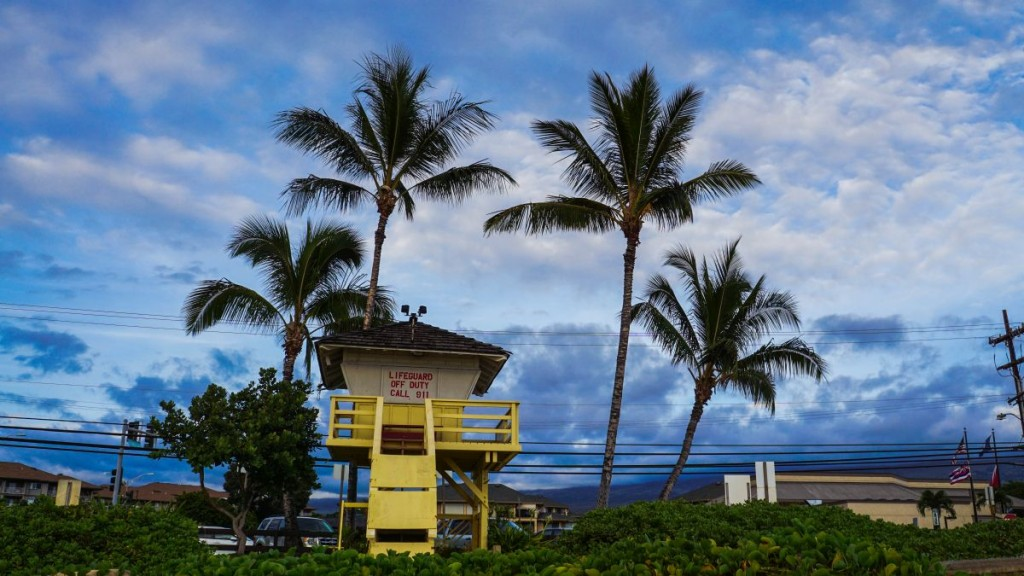 Maui_2015-00210