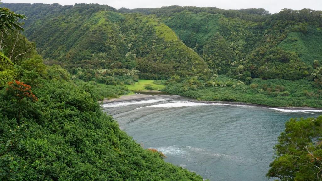 Maui_2015-00513