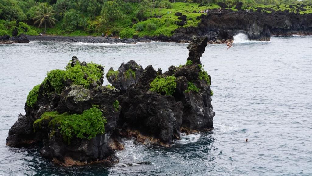 Maui_2015-00562