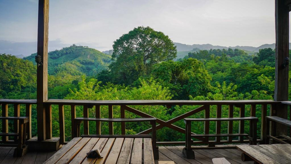 Dschungel, Utopia