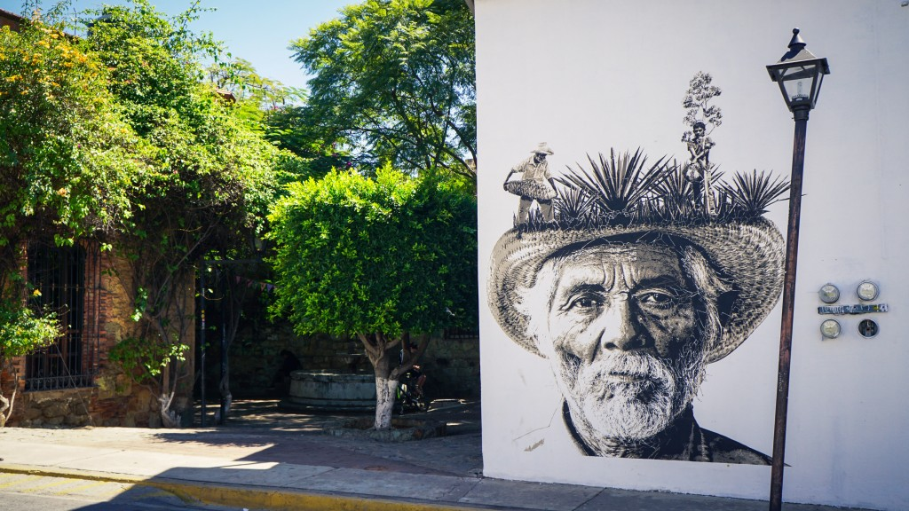 Oaxaca, Streetart